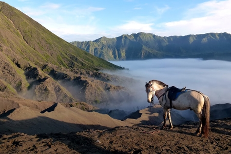 Bromo Tour Package Price