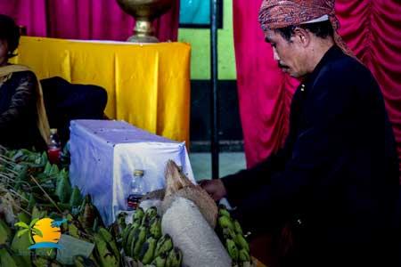 Yogyakarta to Bali tour